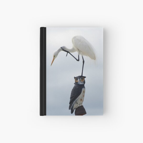 The Egret And The Owl II Hardcover Journal