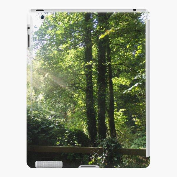 Sun ray in the woodland iPad Snap Case