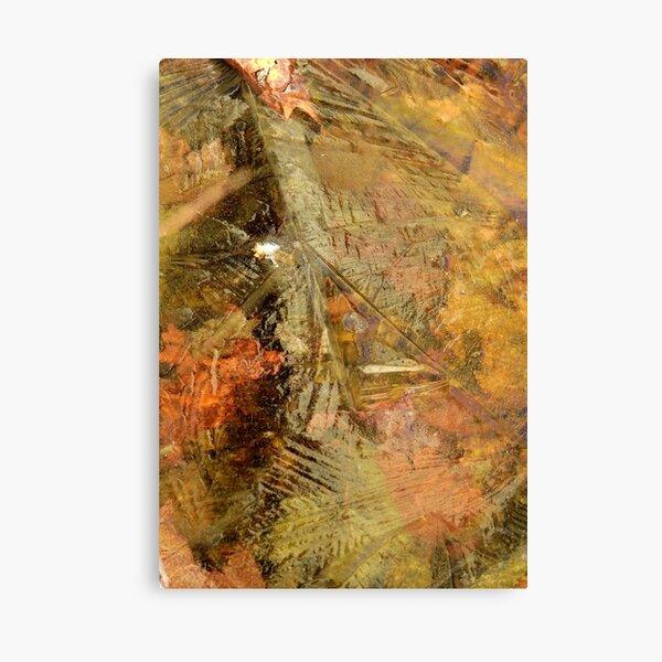 Leaves Beneath Ice Canvas Print