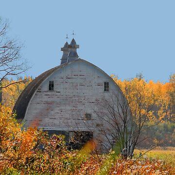 Old Framed Barn by umpa1