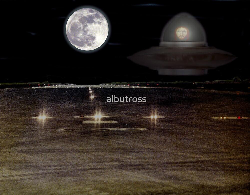 Clear for landing. by albutross
