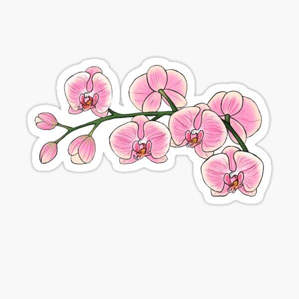 Pink Orchid Sticker Sticker