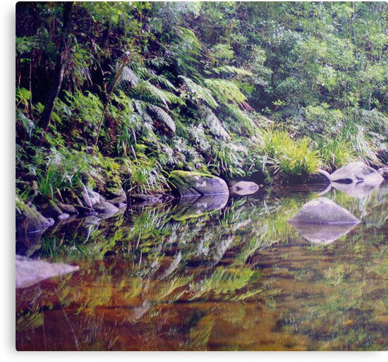 River Reflections, Coombadjha Creek by Michael John