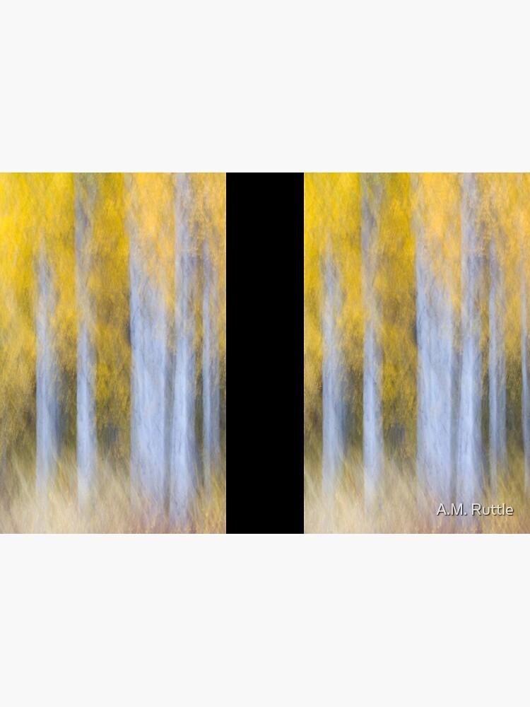 Aspen Abstraction by annruttle