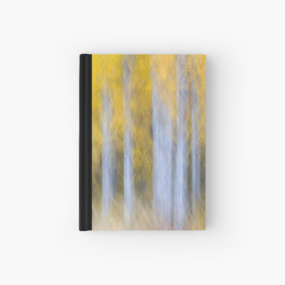 Aspen Abstraction Hardcover Journal