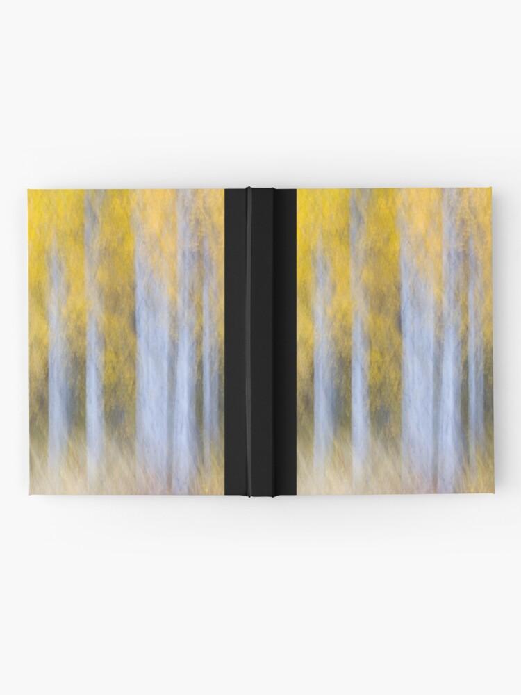 Alternate view of Aspen Abstraction Hardcover Journal