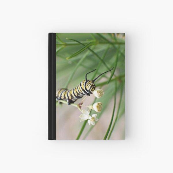 Monarch Caterpillar - 2 Hardcover Journal