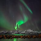Lights above the Lyngenfjord by Mieke Boynton