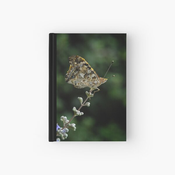 Perched Painted Lady Hardcover Journal