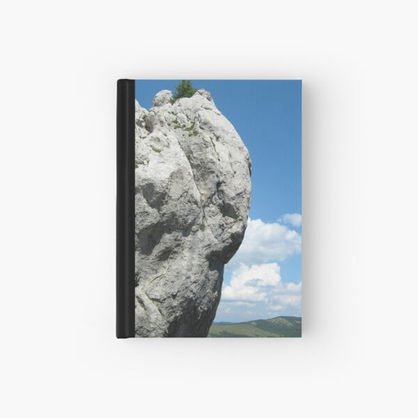 STONE ANGEL PROTECTING THE VALLEY Hardcover Journal