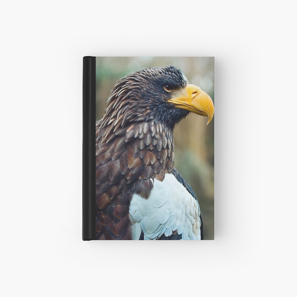 Steller's Sea Eagle Hardcover Journal