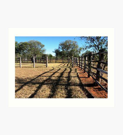 Stockyard fences Art Print