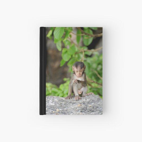 Baby Monkey Hardcover Journal