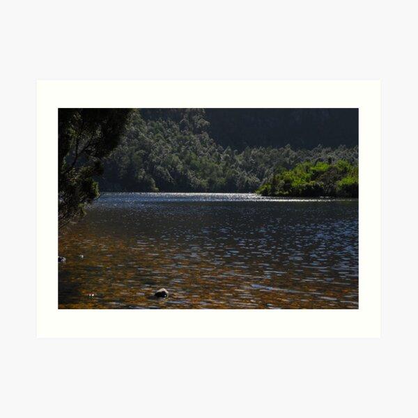 Dove Lake Art Print