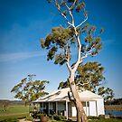 Milton Winery Cellar Door - East Coast, Tasmania by Liam Byrne