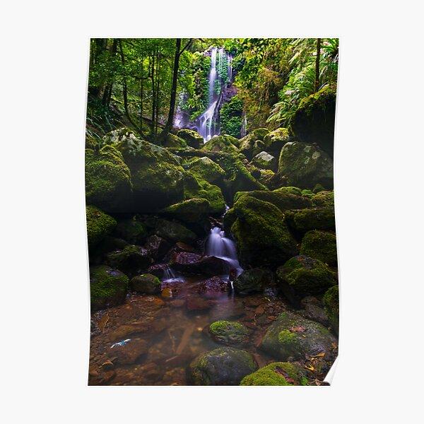 Chalahn Falls Lamington National Park Poster