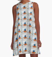 Aprikosen? A-Linien Kleid