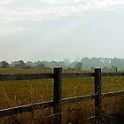 Über dem Zaun - Burnham on Crouch von BlueMoonRose