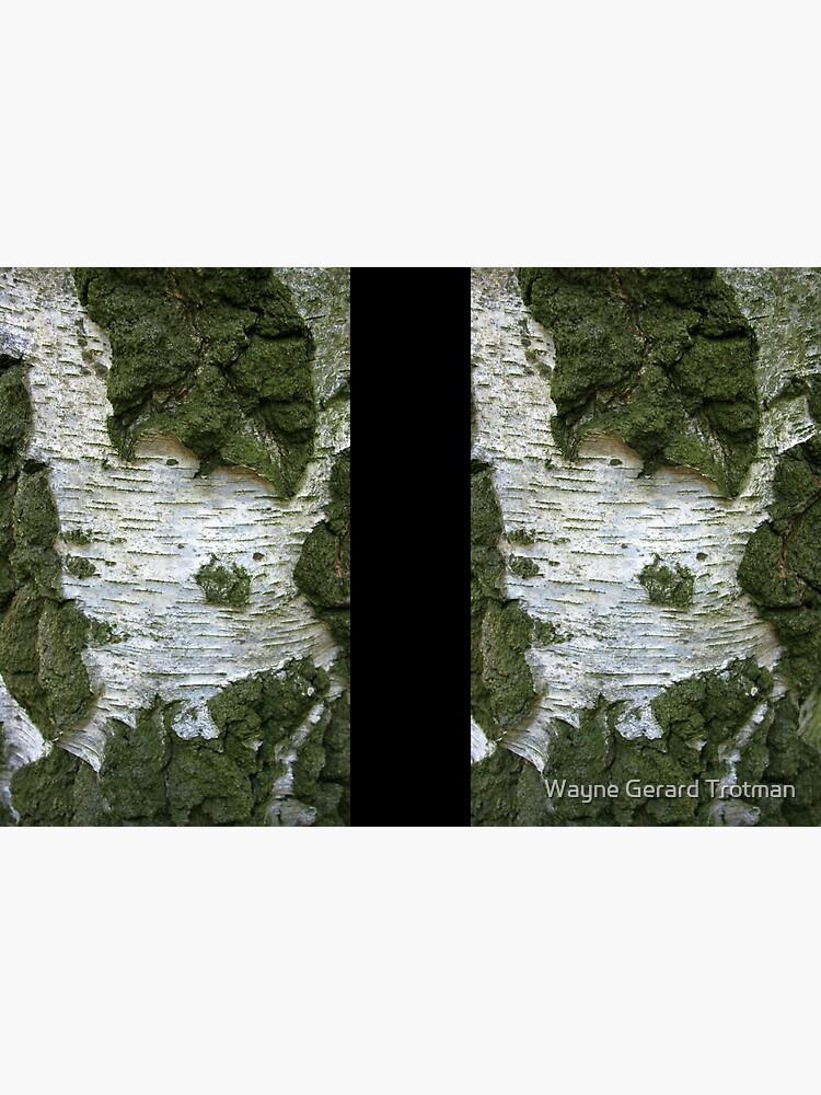 Tree Bark... by redmoondragon