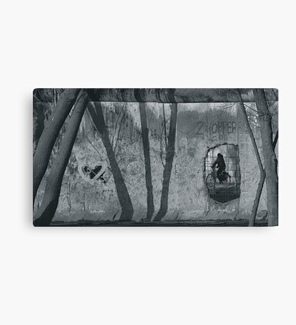 Through the Berlin Wall Canvas Print
