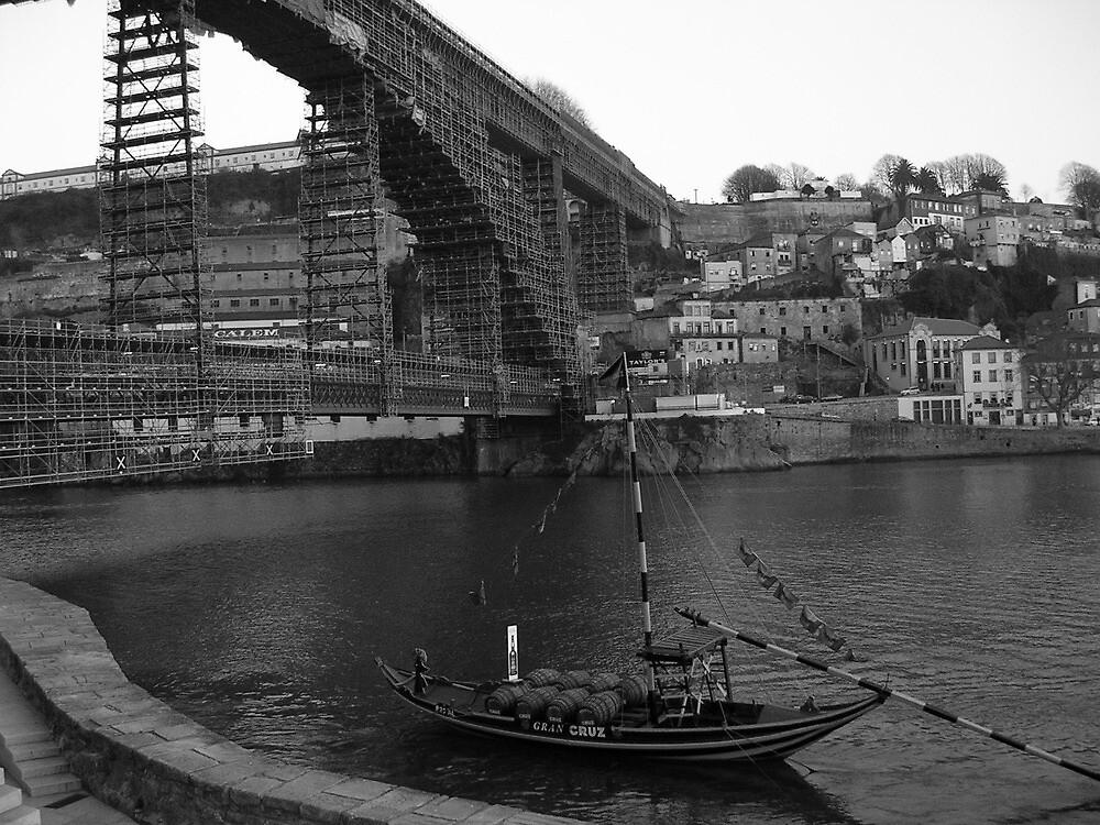 Douro e Barco Rebelo Porto - Oporto by lilivanili