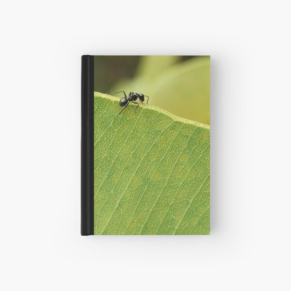 Climb Every Mountain # 2 Hardcover Journal
