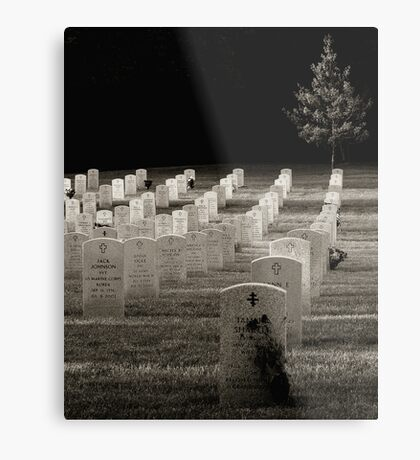 Last of the Day Metal Print