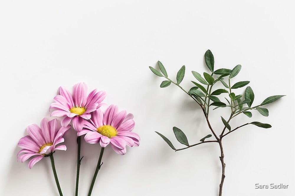 Petals and Leaves by Sara Sadler