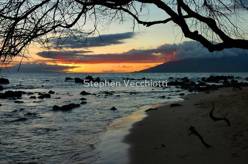 Maui Sunset by Stephen Vecchiotti