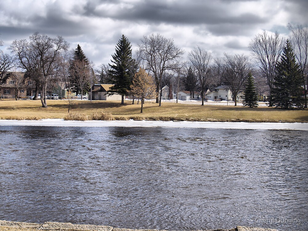 cloudy view in thief river by Cheryl Dunning