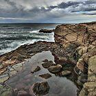Oregon Coast Boiler Bay by Charles & Patricia   Harkins ~ Picture Oregon