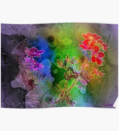 Floral ecstasy Poster