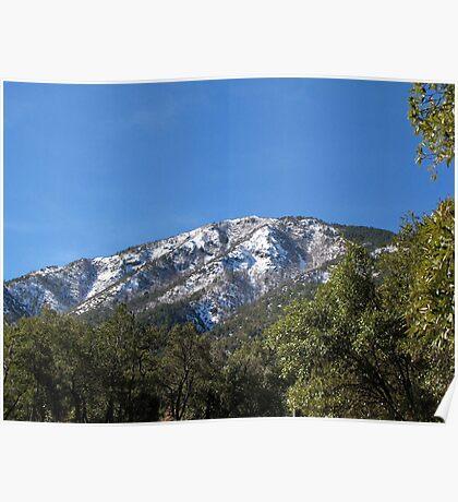 Sonoran Scenery Series ~ 7 ~  Madera Canyon Poster
