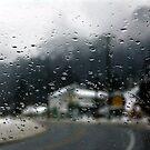 Freezing Rain by Jann Ashworth