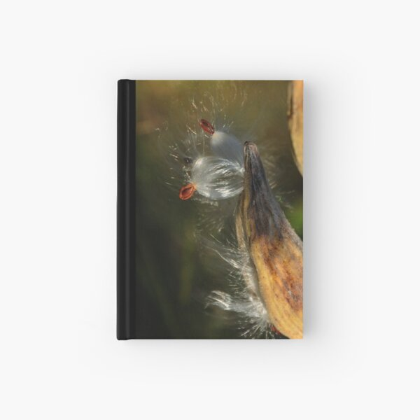 Escape Hardcover Journal