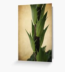 Reaching for the Sky Greeting Card