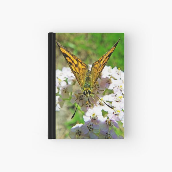A Dream Unfolding Hardcover Journal
