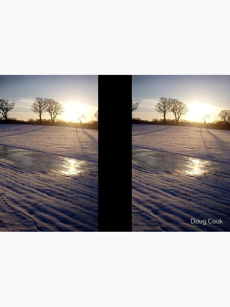 Dalmeny Winter Sun by DougCook