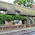Thatched Cottage in Hampshire by Lesliebc
