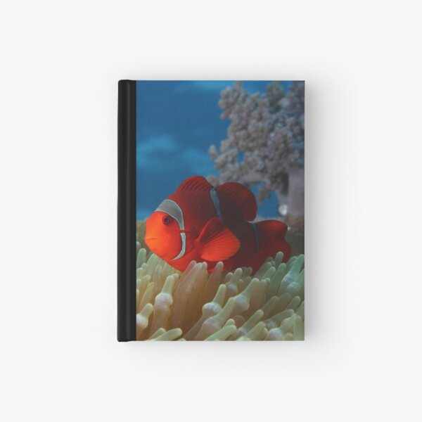 Spiny Cheeked Anemone Fish Hardcover Journal