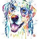 Bernese Mountain Dog by Lisa Whitehouse