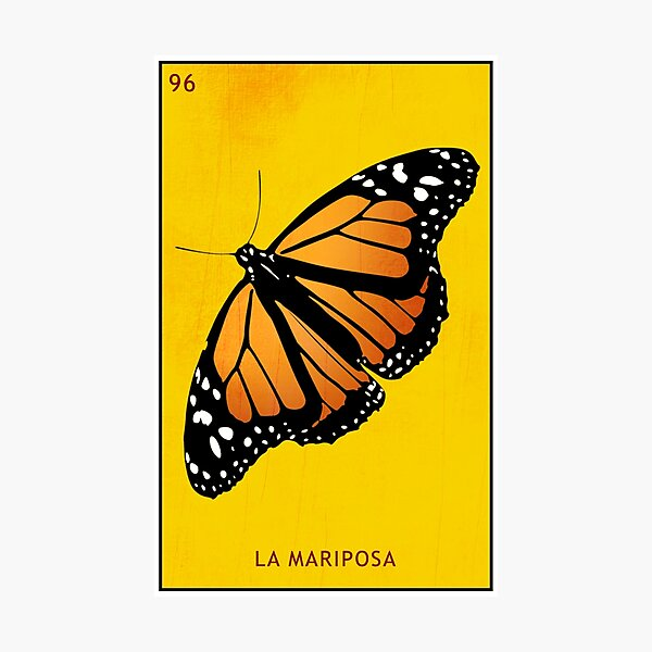 Mariposa Photographic Print