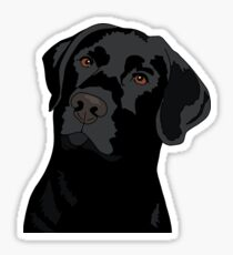 Duke the Lab Sticker