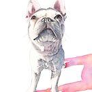Französische Bulldogge von Louise De Masi
