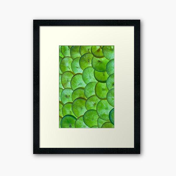 Slices of lime Framed Art Print