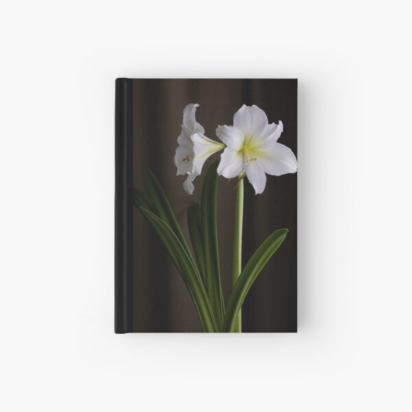 Amaryllis Hardcover Journal