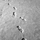Walking on the moon by Andrea Vallejos (nee Lindenberg)