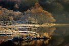 Loch Chon  by David Mould