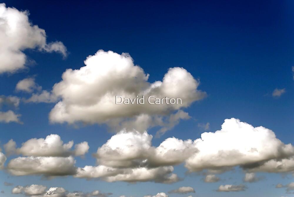 Cumulus clouds, blue sky by David Carton