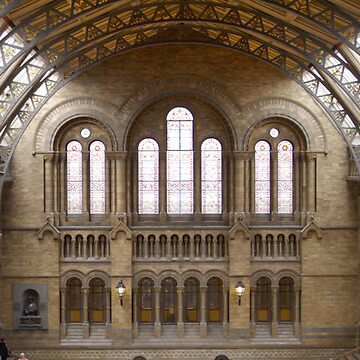 The Natural History Museum by stitchgrin